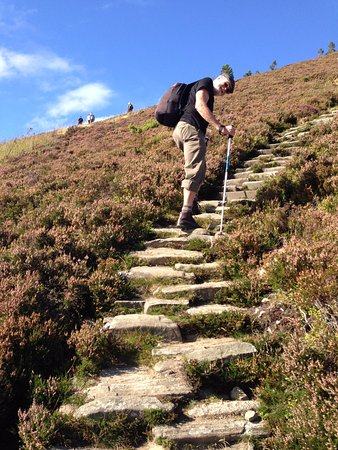 Netherfield Bed and Breakfast : Hike in the Cairngorms