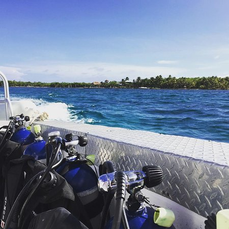 Long Caye, Belice: Time to dive