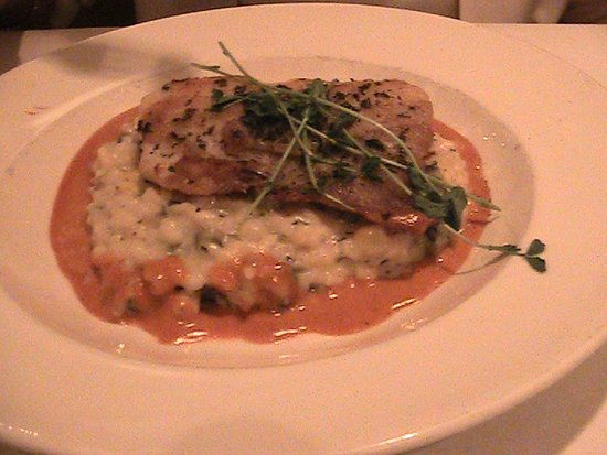 Clayton, MO: Warm Water Sea Bass