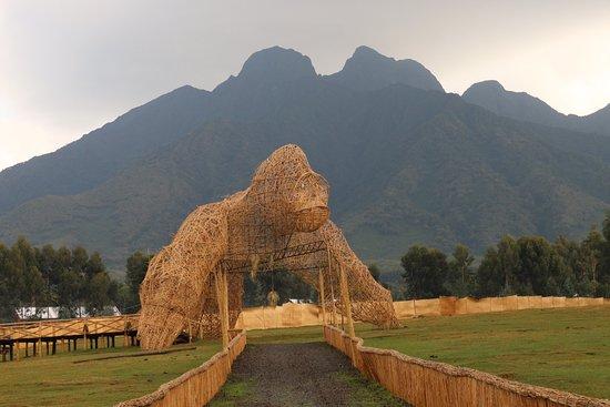Volcanoes National Park: photo2.jpg