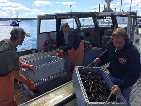 Harpswell, Maine: photo2.jpg