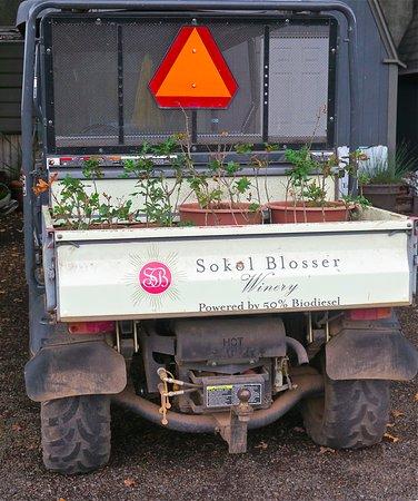 Dundee, Oregón: Bio-diesel