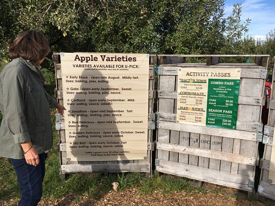 Tuttle Orchards: Tuttle's
