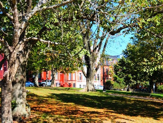 cute houses line the street picture of queen square farmers market