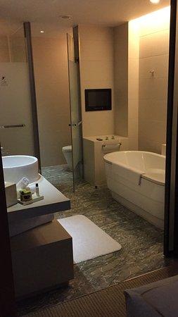 De badkamer is voorzien van ligbad en zeer goede dochecabine ...