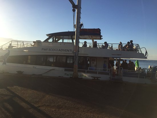 Maalaea, Hawaï: The Odyssey, our boat