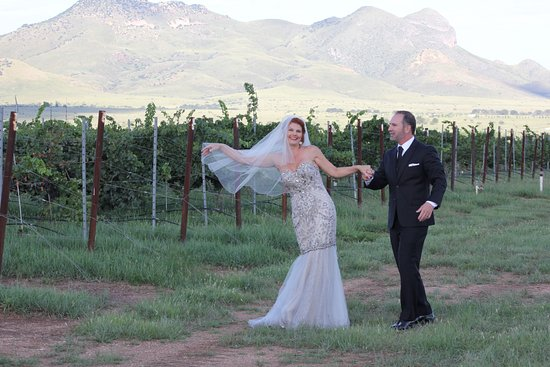 Elgin, AZ: Bride and Groom in the Vinyard