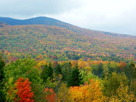 Jefferson, NH: view from the top