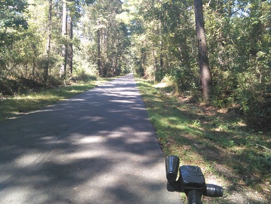 Slidell, لويزيانا: Great View in the Fall on the Tammany Trace Trail.