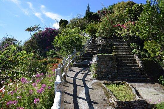 Brinchang, มาเลเซีย: Inside the garden