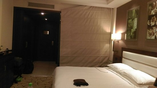 Optus Sarovar Premiere Gurgaon: IMAG4020_large.jpg