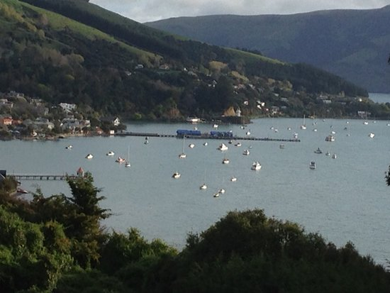 Akaroa TOP 10 Holiday Park: View from Top 10