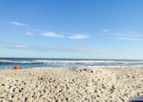 Dove Winds : Beach at Assateague Island