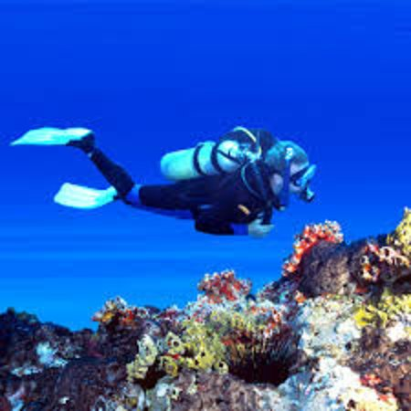 Nea Peramos, Greece: Let's go Scuba Diving!