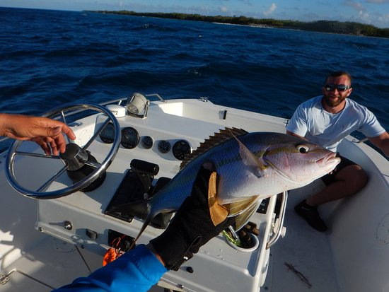 Baracuda on spinning tackle fly fishing aruba with Fishing in aruba