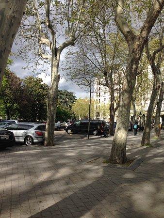 Radisson Blu Hotel, Madrid Prado: photo0.jpg