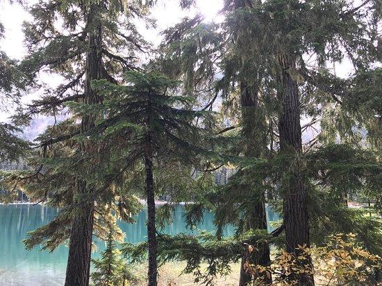 เพมเบอร์ตัน, แคนาดา: Joffre Lakes Provincial Park