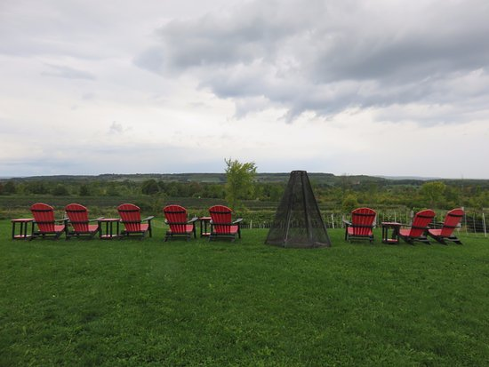 Grey County, Canada: Seats with a view