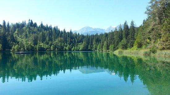 Flims, Switzerland: Великолепная гладь воды