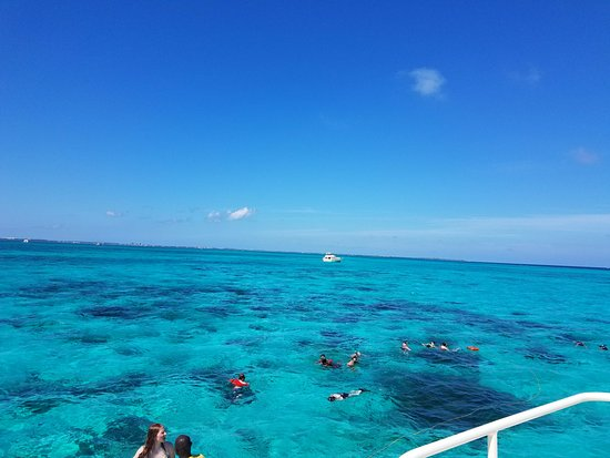 George Town, Grand Cayman: Snorkeling