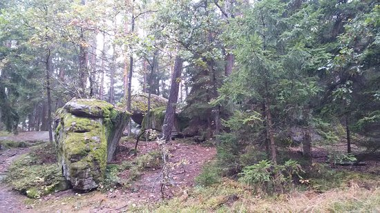 Gmuend, Österrike: Naturpark Blockheide
