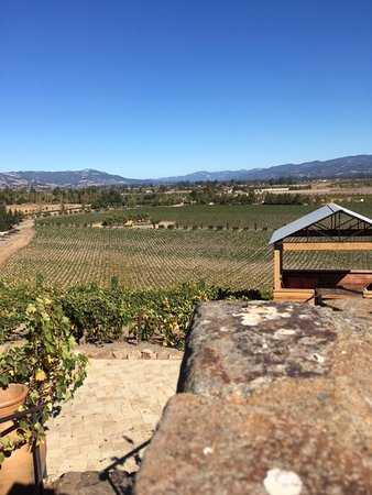 Viansa Winery and Italian Marketplace: another view of the valley