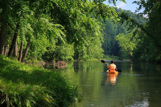 Fort Lewis Lodge: Canoeing on the Cowpasture River