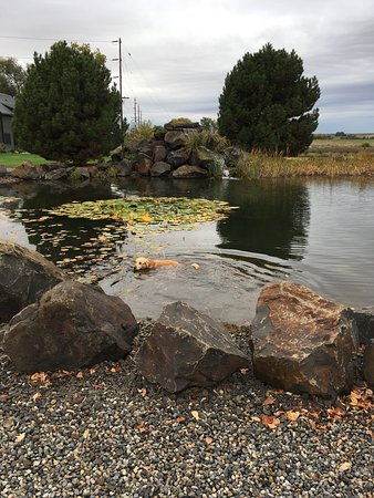 Lowden, WA: Lovely pond and waterfall