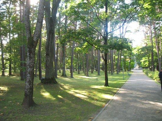 Alytaus Miesto Parkas