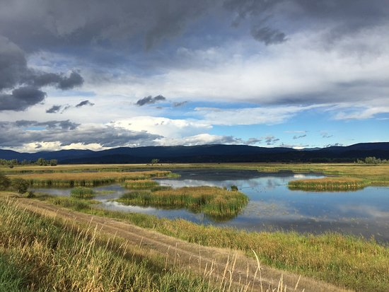 Bonners Ferry, ID: View from the auto road across the marshes and meadows