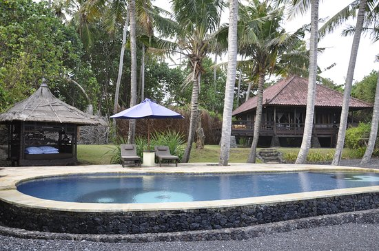 Turtle Bay Hideaway: Blick vom Pool auf die Villa