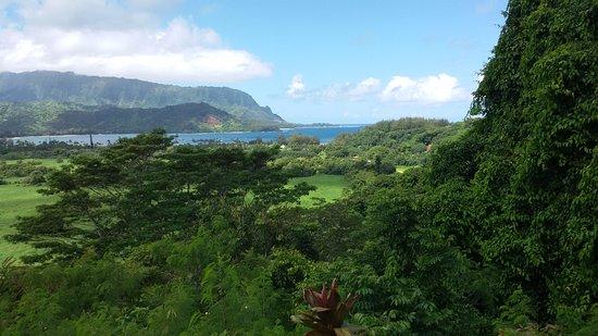 Kilauea, HI: paesaggio
