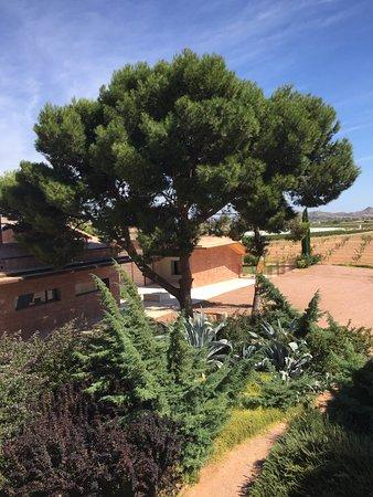 La Romana, Spanien: Vistas desde la habitación.
