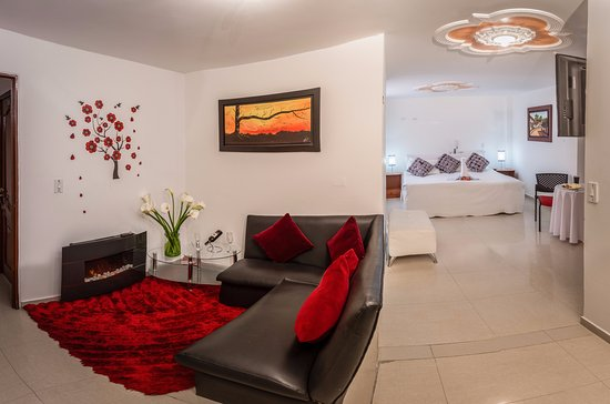 Hotel Parque Zabal: ROOM WITH FIREPLACE