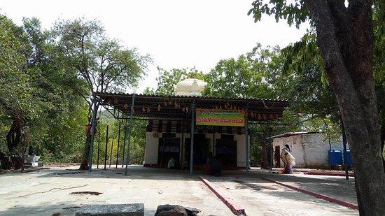 Srikalahasti, Индия: Temple View-1