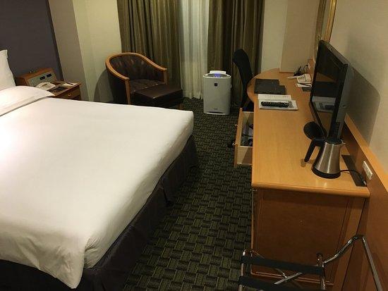 Hilton Tokyo Narita Airport Hotel: photo4.jpg