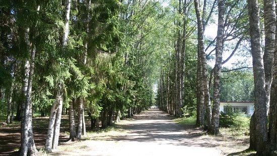 Memorial Park Svirskaya Victory