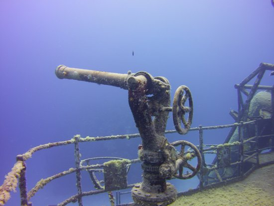 Kittiwake Shipwreck & Artificial Reef: photo7.jpg