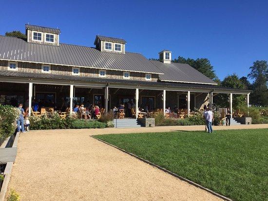 North Garden, VA: Outdoor seating/tasting area
