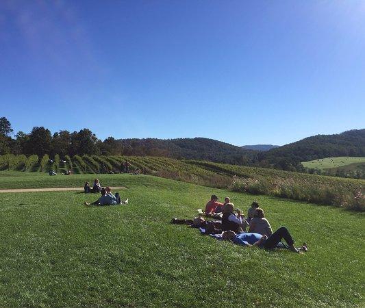 North Garden, VA: Views from the hill