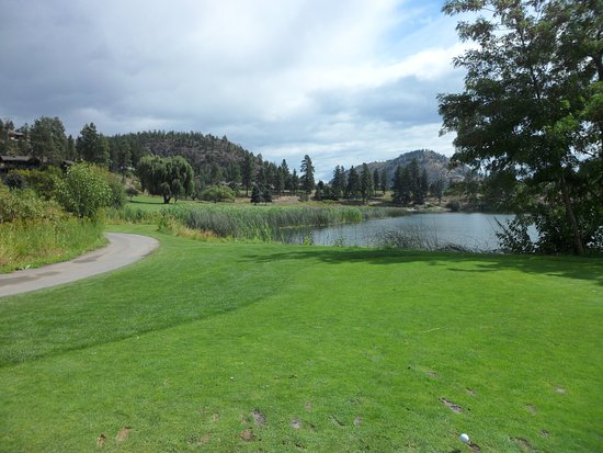 Shannon Lake Golf Club : Tee shot on 8th hole from the Blue Tee 410 Yards