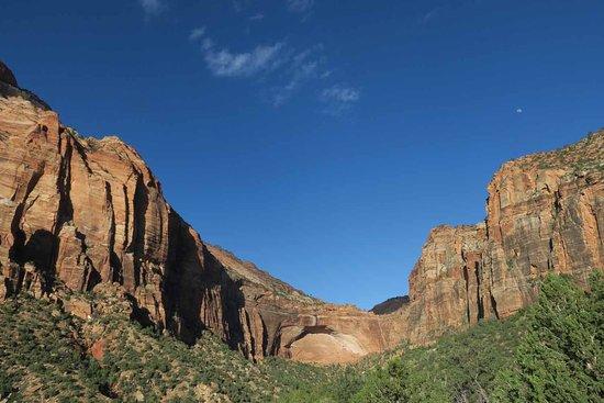 Zion's Main Canyon