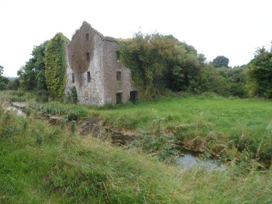 Newbridge, أيرلندا: Ruins of the old mill