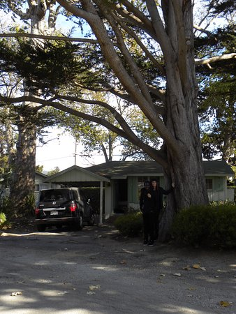 Carmel River Inn: Sweet Little Cottage