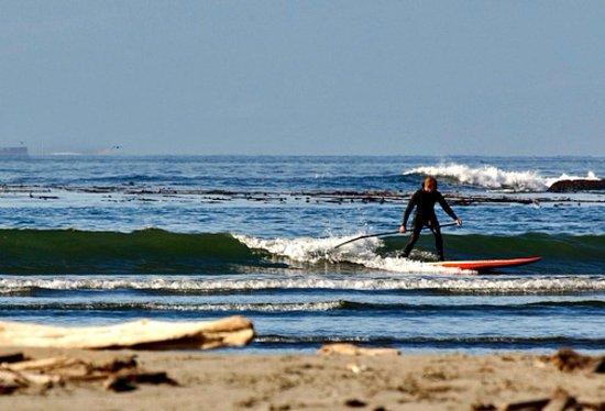 Dana Point, CA: surfers love the spot