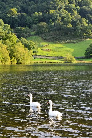 Rydal, UK: Early morning in the Lake Country