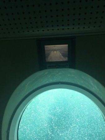 Seogwipo Submarine : photo9.jpg