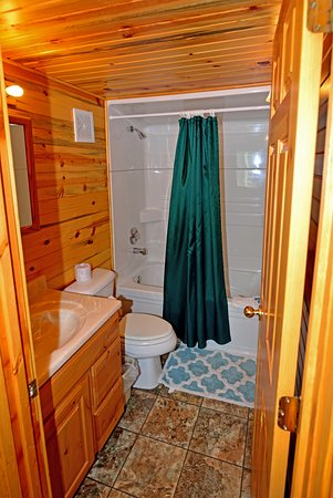 Island Park, ID: bathroom in rental cabin