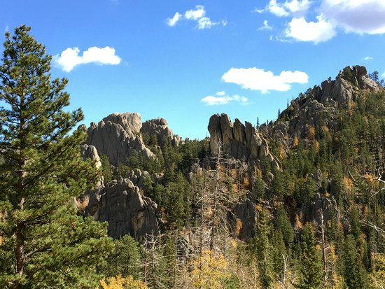 State Game Lodge: Needles Highway