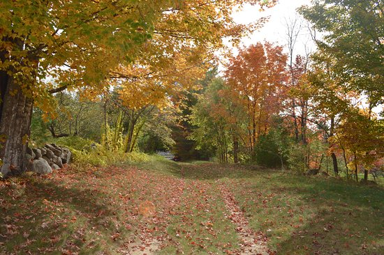 Olde Orchard Farm: Path on prooperty